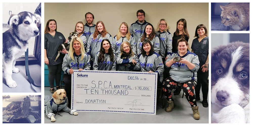 Montreal-spca-$10000-Sekure-fundraising